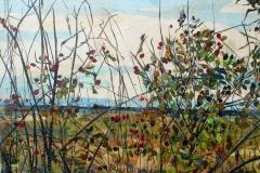 Saskatchewan Landscape in October