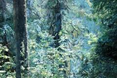 Qualicum Woods
